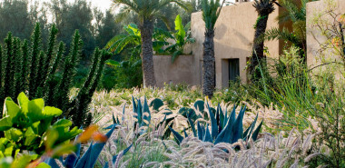 Natural Landscapes & Gardens of Morocco