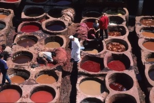 Fes, Tanneries (6)