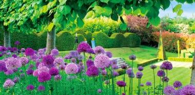 Classic & Contemporary Gardens of England: A Designer's Guide incl. the Hampton Court Palace Flower Show