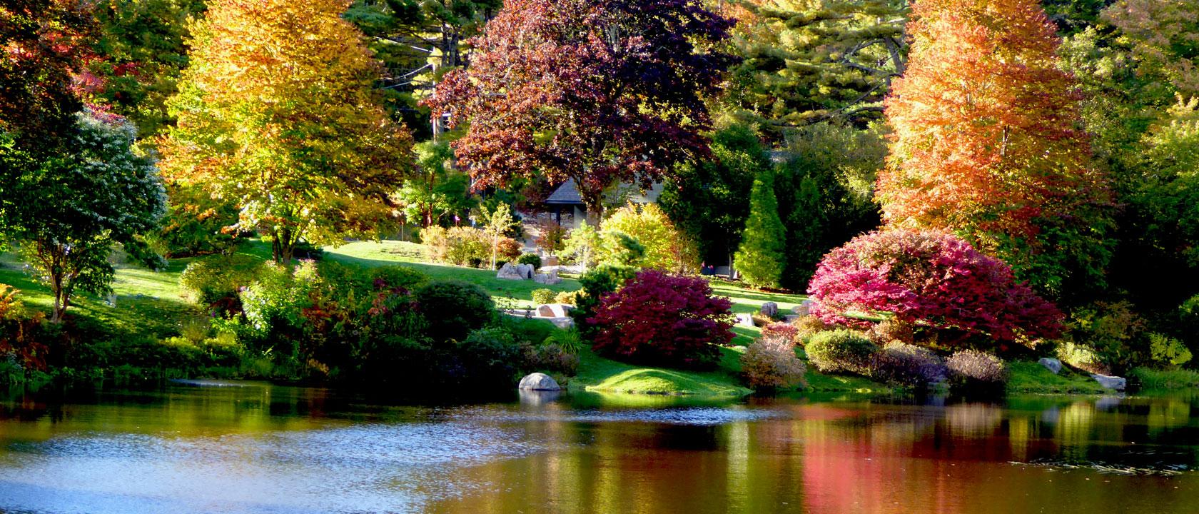 Asticou Azalea Gardens created by Charles K. Savage, Mt Desert Island, Maine - by John Patrick.