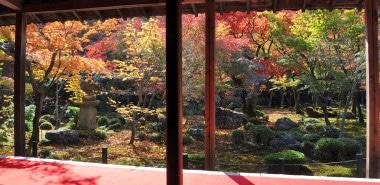 Autumn & the Art of the Japanese Garden