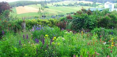 A Taste of Tasmania: Spring Gardens, Cradle Mountain & Gourmet Delights