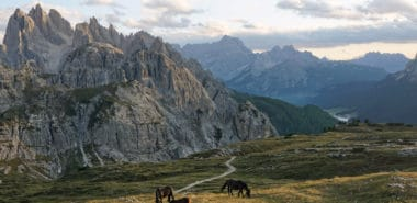 Exploring the Tyrol: The History and Culture of an Alpine Frontier 2021